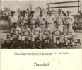 Baseball, 1955, NHS team.jpg