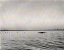Hunting, Duck, Peter Whitam camoflaged with decoys on Great Bay.jpg