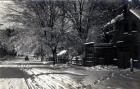 Exeter Street Winter scene.jpg